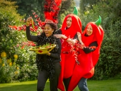 Feel the heat at Dorothy Clive Garden's Chilli Festival