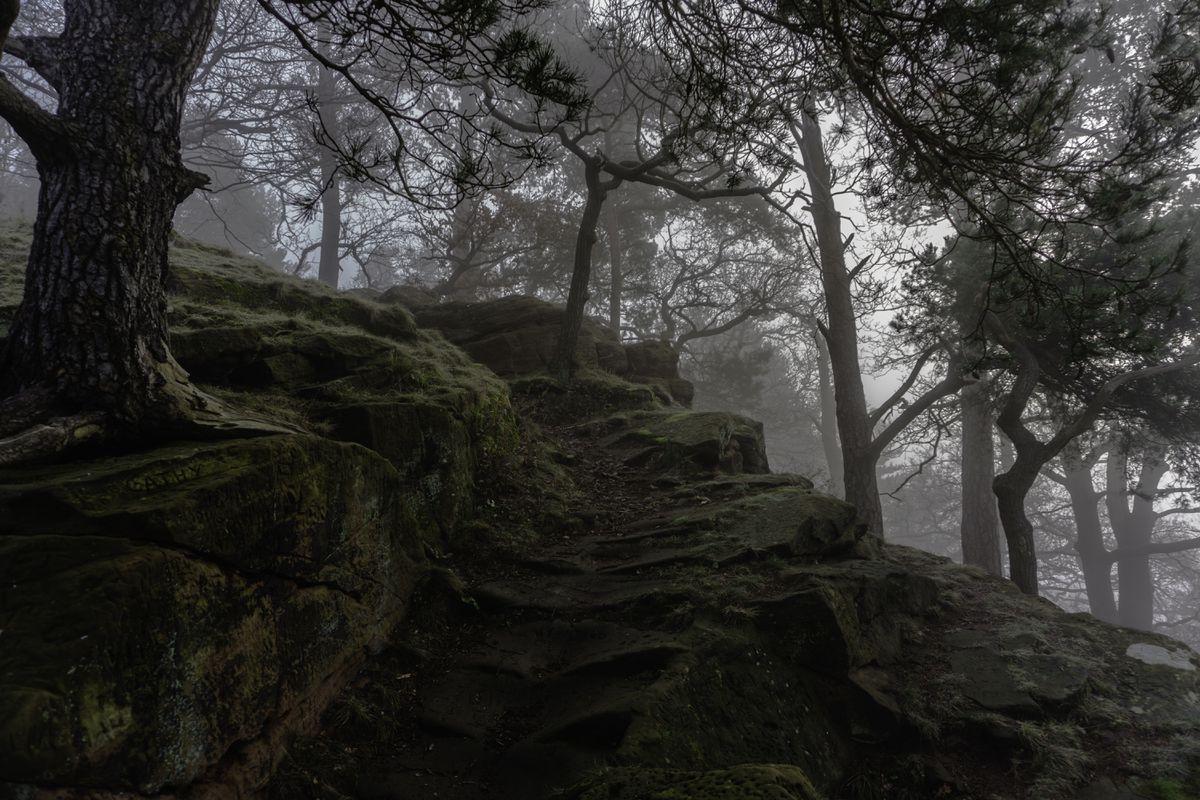 Foggy Morning Up High Rock by Alan Gwilt