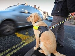 Telford private hire driver who refused guide dog must pay £2,300