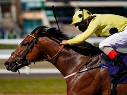 Weighing in for racing's return to Dunstall