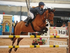Oswestry hosts top equine stars at horse festival