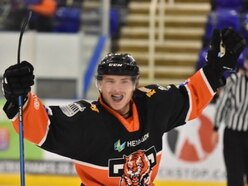 Telford Tigers roar back into top spot