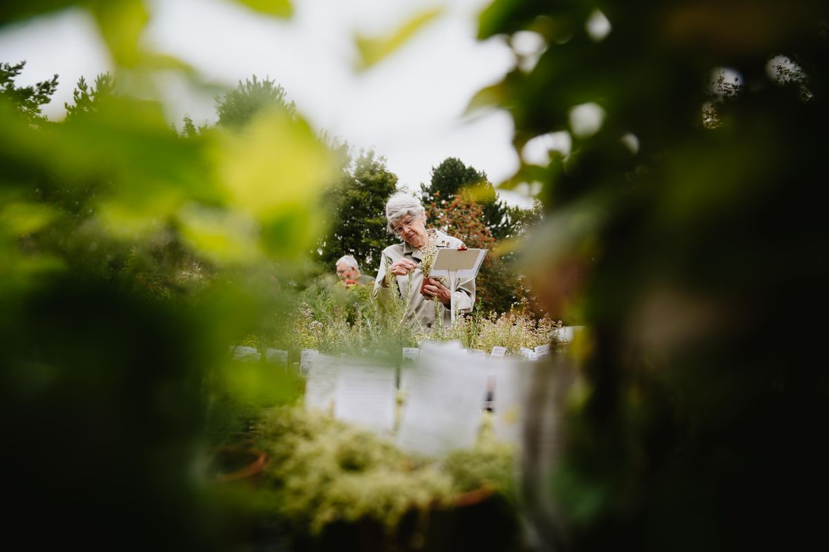 Plant Hunters Fair at Dorothy Clive Garden near Market Drayton