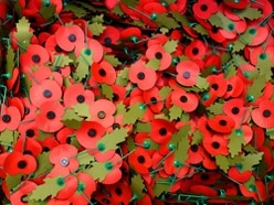 Record £26,000 raised for Poppy Appeal in Newport