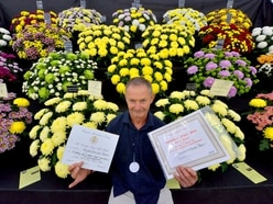 Shrewsbury Flower Show: Thousands expected on second day despite chance of rain