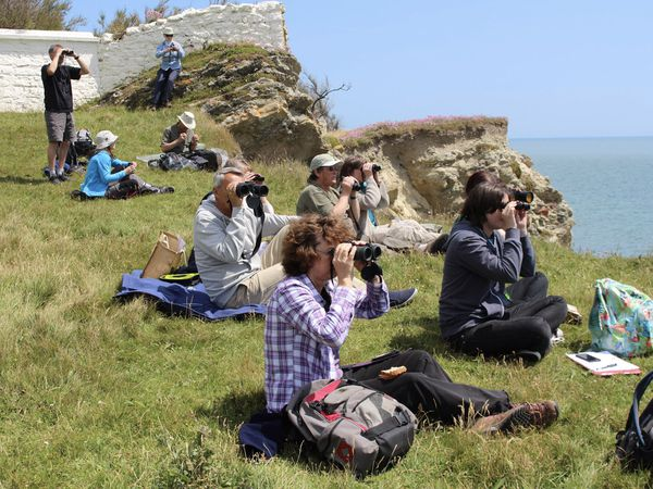 Field Studies Council has teamed up with marine conservation charity ORCA to boost the number of UK-based citizen scientists which can take action to protect the UK's whale and dolphin populations