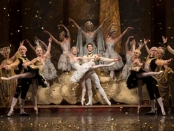 The Sleeping Beauty, Birmingham Royal Ballet, Birmingham Hippodrome - review and pictures