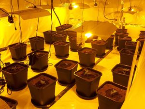 The grow was located in Craven Arms. Photo: @ShrewsburyCops