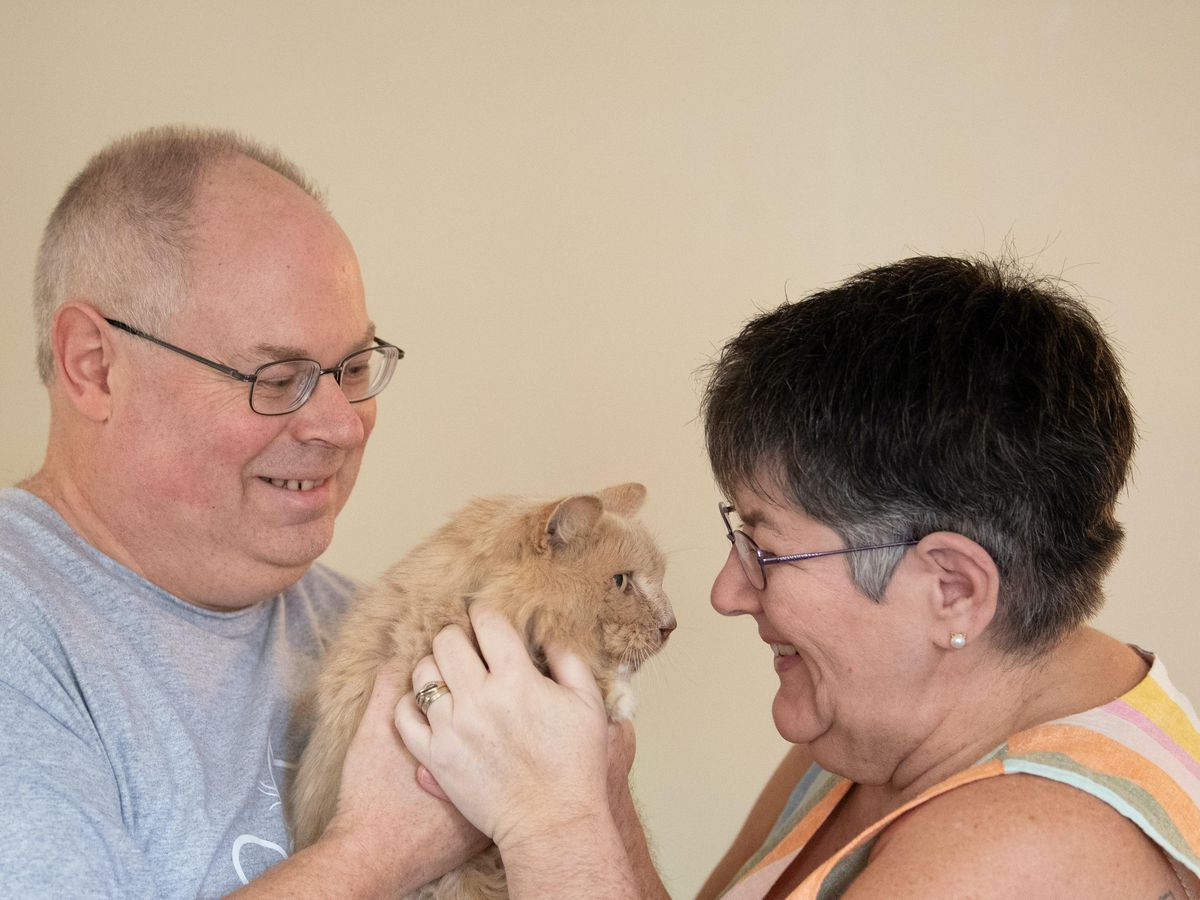 Biscuit the cat returns home