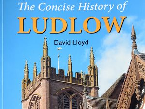 The Concise History of Ludlow by David Lloyd.