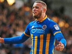 Analysis – Keeping the chasing pack behind crucial for Shrewsbury Town belief
