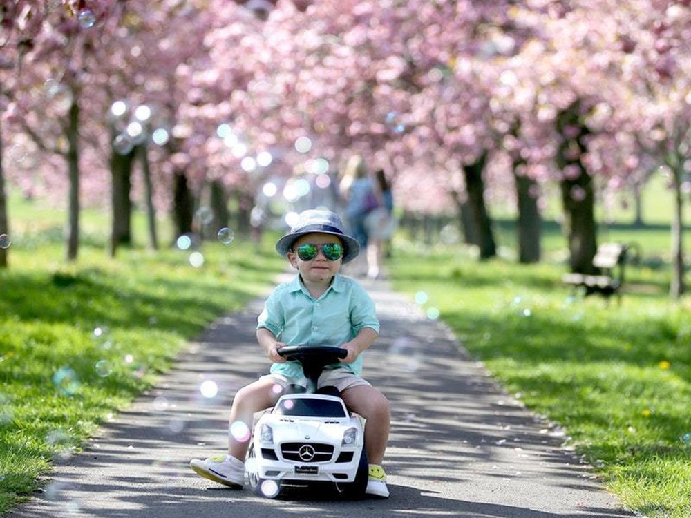 WEATHER: Sheffield set for warm and sunny Bank Holiday weekend