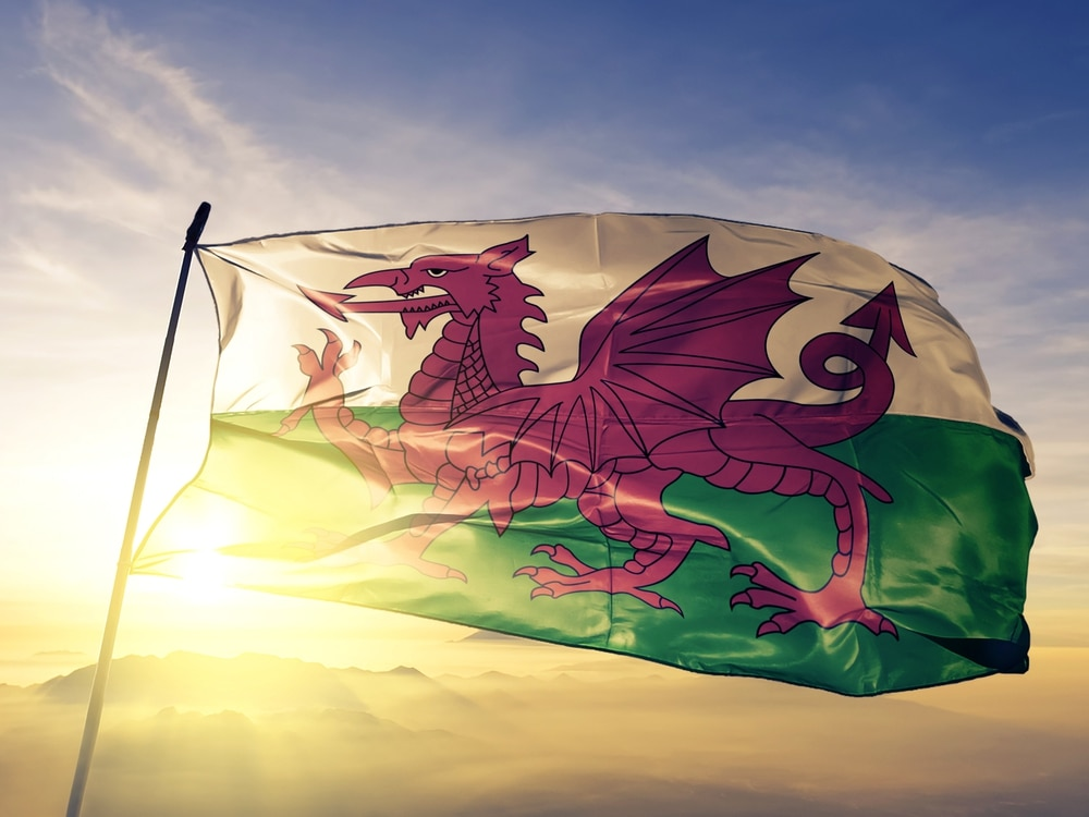 St David's Day 2019: Where to celebrate across Shropshire and the Midlands