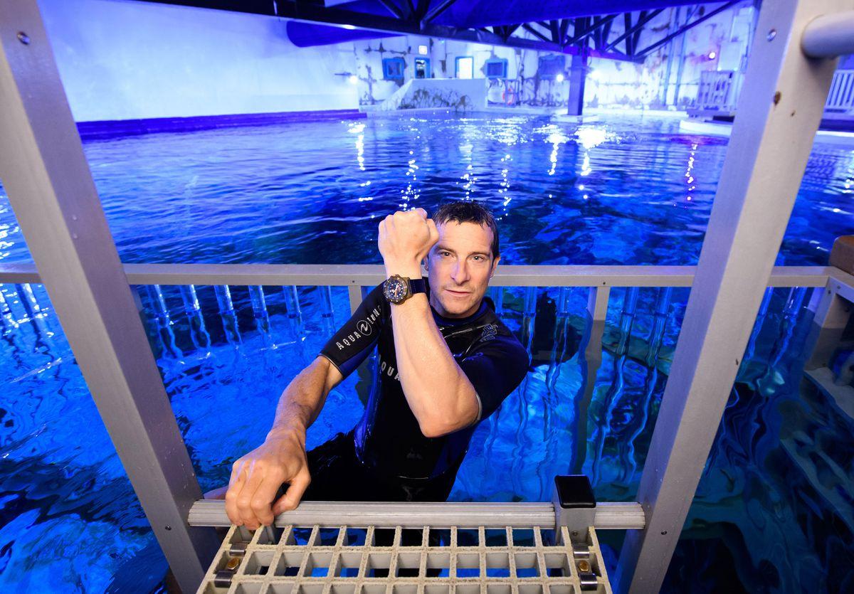 Bear Grylls in the shark tank