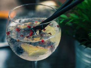 Roaring 20s gin festival coming to Shrewsbury