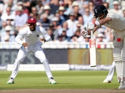 Fans were struggling to see the new pink ball on TV in England's first day-night Test