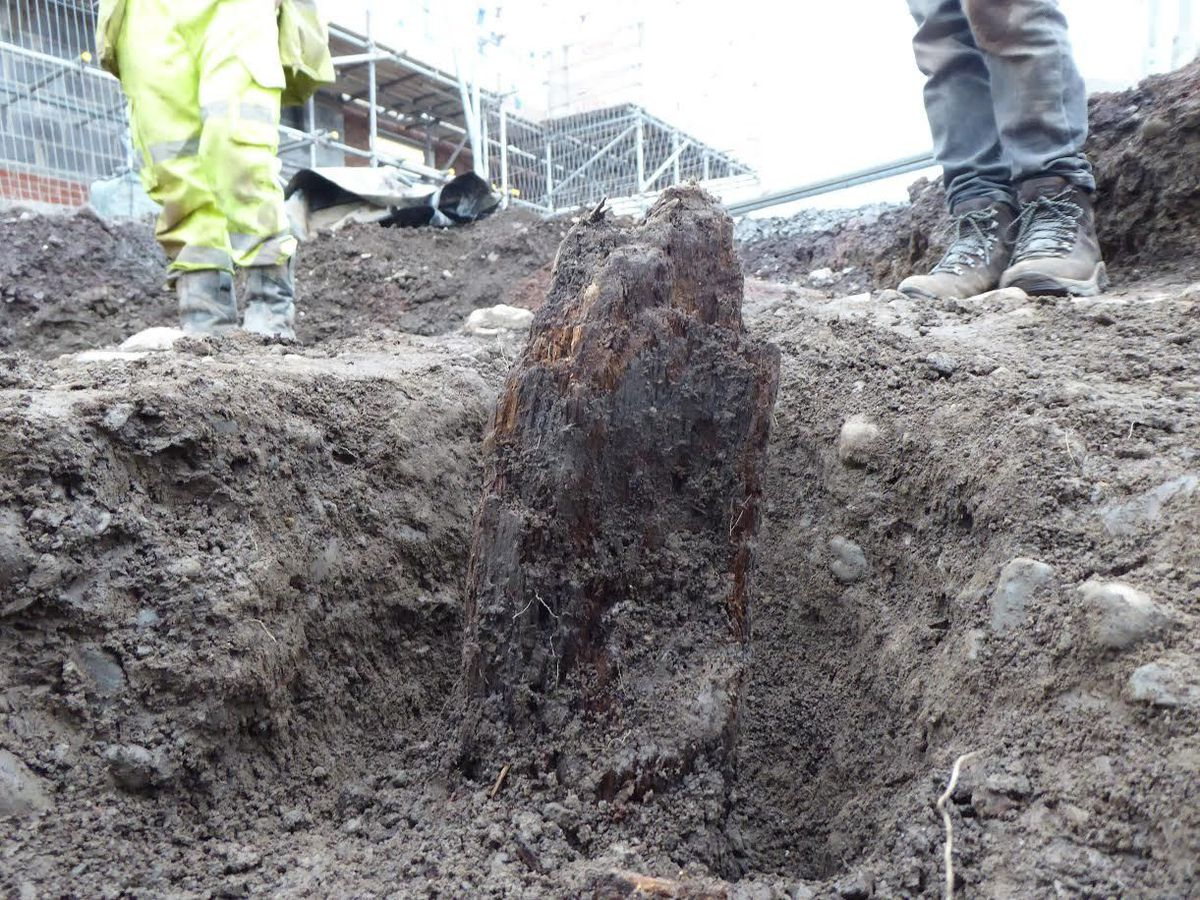 The wooden post in situ