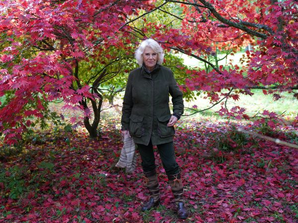 The Duchess of Cornwall during a visit to Westonbirt, the National Arboretum in Gloucestershire