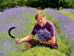 New life beckons for Shropshire lavender farm couple