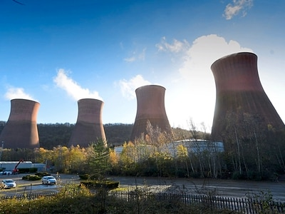 Newts to be moved ahead of Ironbridge Power Station demolition