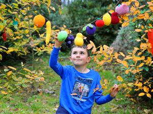 Keelan Jones, eight, is among those enjoying the Woollen Woods