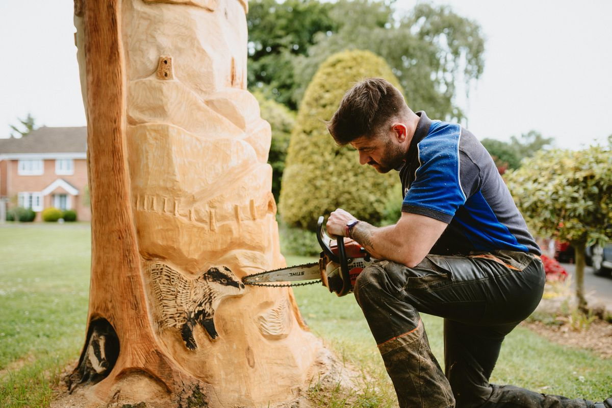 Joffrey Watson, aka The Chainsaw Bloke, has created a tree sculpture featuring animals and landmarks