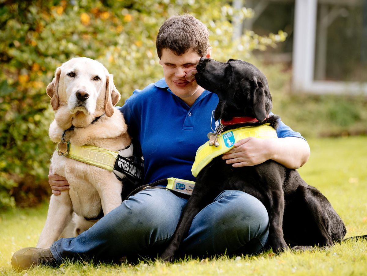 Eleanor Roberts from Newport with her retired guide Dog Woody and new guide dog Cally