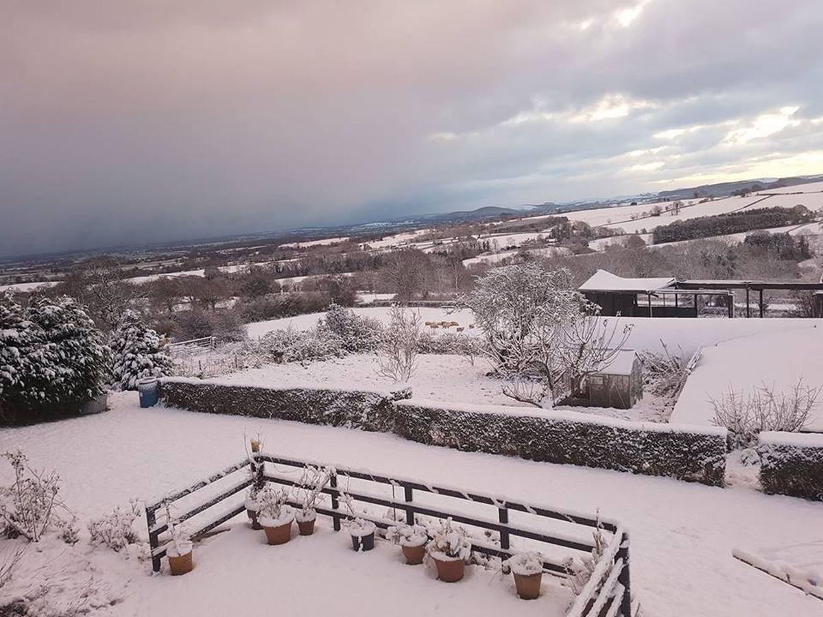 Brilliant snowy scene from Helen Humphries
