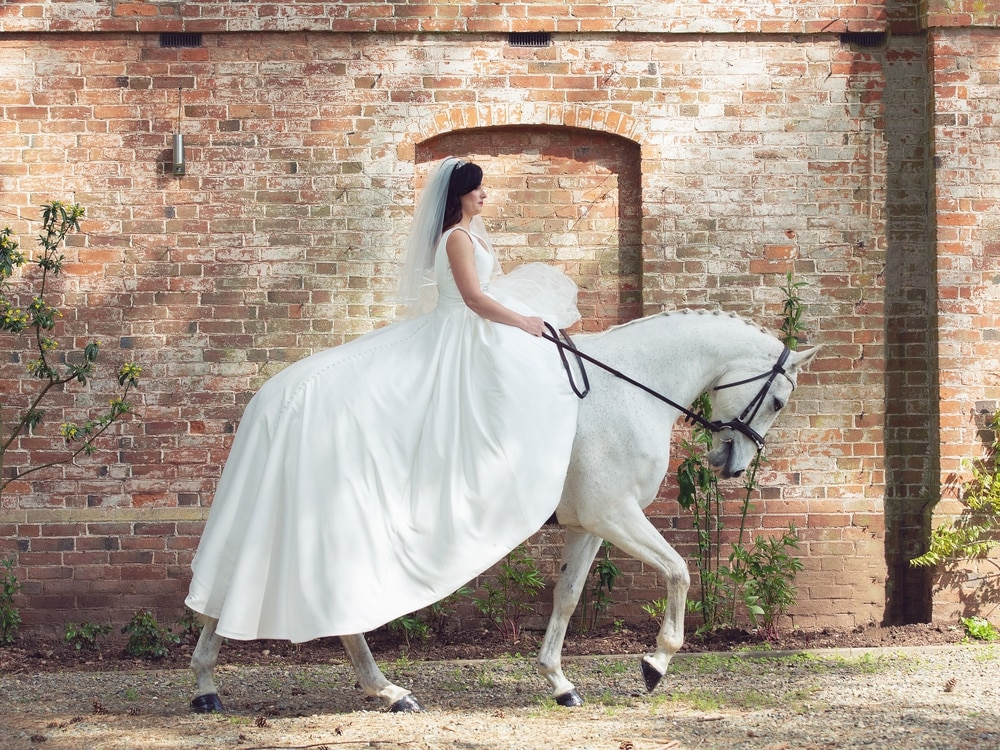 Wedding pictures a thing of fantasy for Shropshire horse lovers