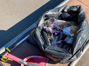 Some of the litter collected. Photo: Councillor Thomas Janke