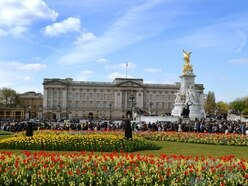 Man arrested at Buckingham Palace over 'firearm offence'