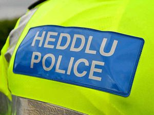 Police appeal for witnesses after woman hit by vehicle