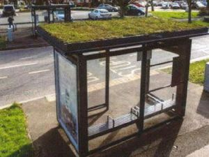 Grass topped bus shelter