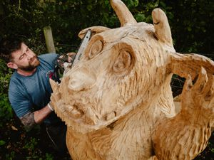 Joffrey Watson, known as The Chainsaw Bloke, has been commissioned to carve a Gruffalo Trail for the woodland area of Severn Hospice Shrewsbury