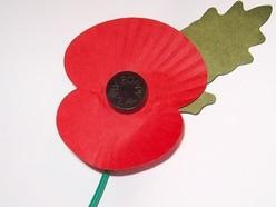 Shrewsbury light show to remember county's fallen