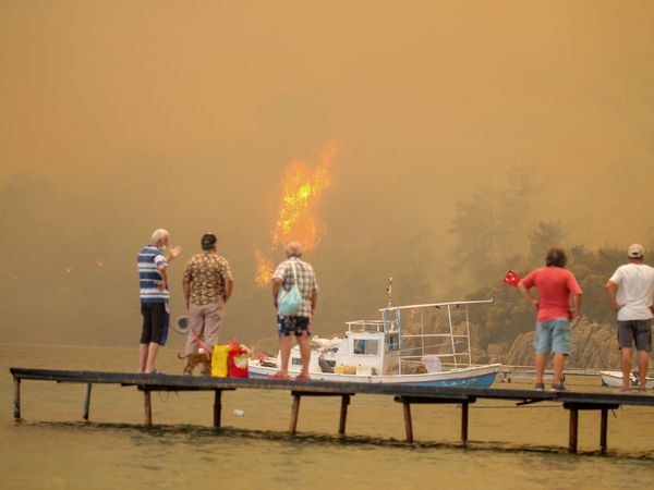 Tourists watching a wildfire