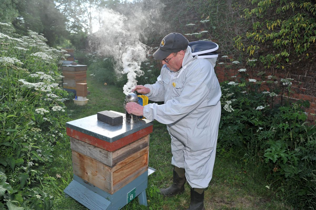Alan lights a smoker which is used to calm the bees by masking the pheromones they use to communicate with one another