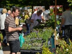Bargains on offer at plant hunters' fair near Market Drayton