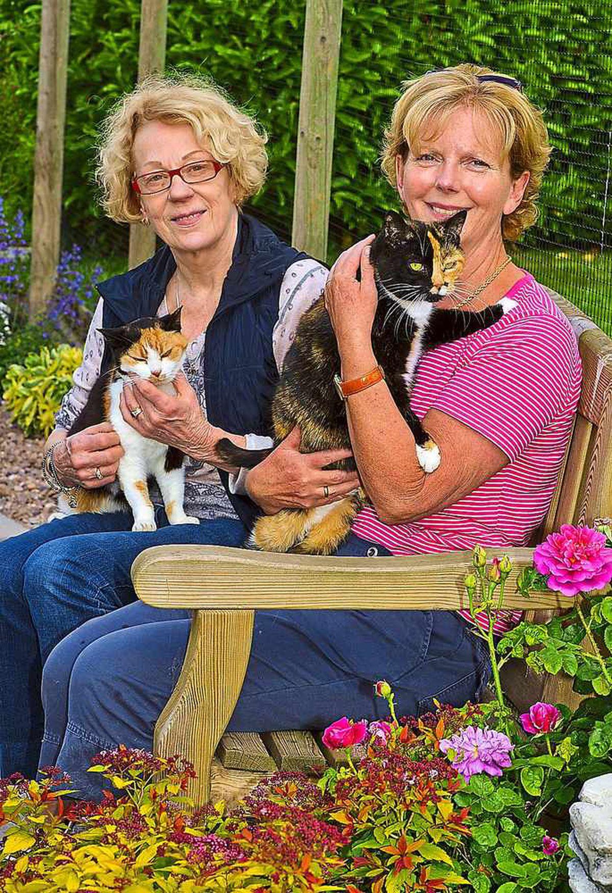 Rosie Bingham and Pat Piggott at Shropshire Cat Rescue