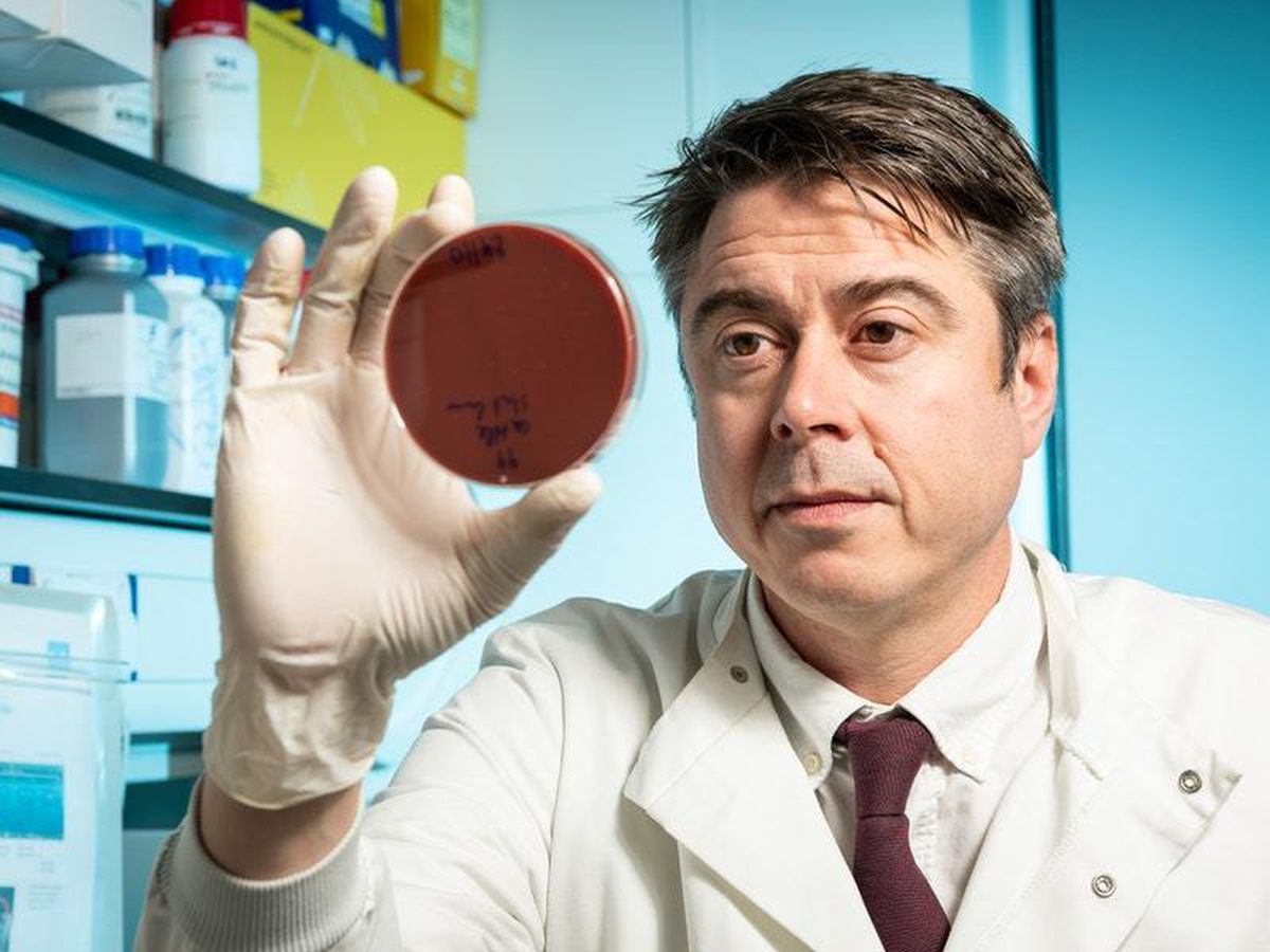 Professor Sam Sheppard in a lab with petri dishes and pipettes (University of Bath/PA)