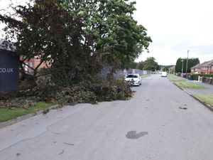 Storm Francis blew a tree across Gibbons Road in Trench. Photo: @Telford Cops.