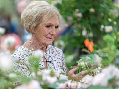 Chelsea Flower Show: Golden glow as David Austin Roses welcomes celebs to award-winning garden