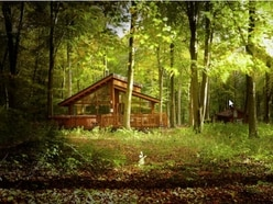 Petition to stop Mortimer Forest development signed by 3,000