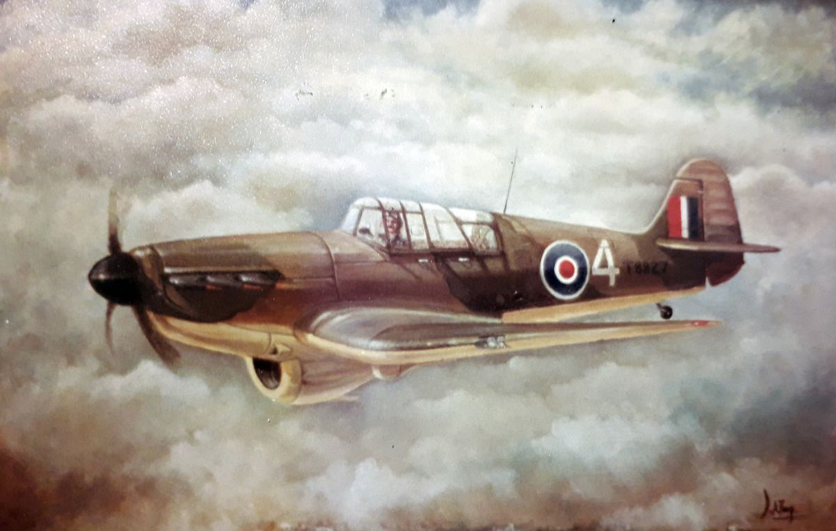The ill-fated aircraft, as depicted in a painting David did as a thank you to farmer Peter Thomas.