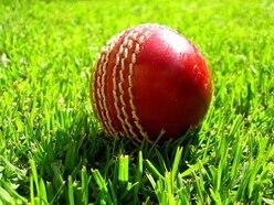 Shifnal claim T20 success