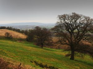 SHREWS PIC MNA PIC DAVID HAMILTON PIC  SHROPSHIRE STAR 31/12/2019 A view from Lyth Hill, Shrewsbury..
