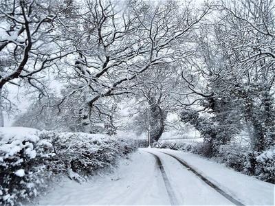 Freezing rain and black ice warning for Shropshire