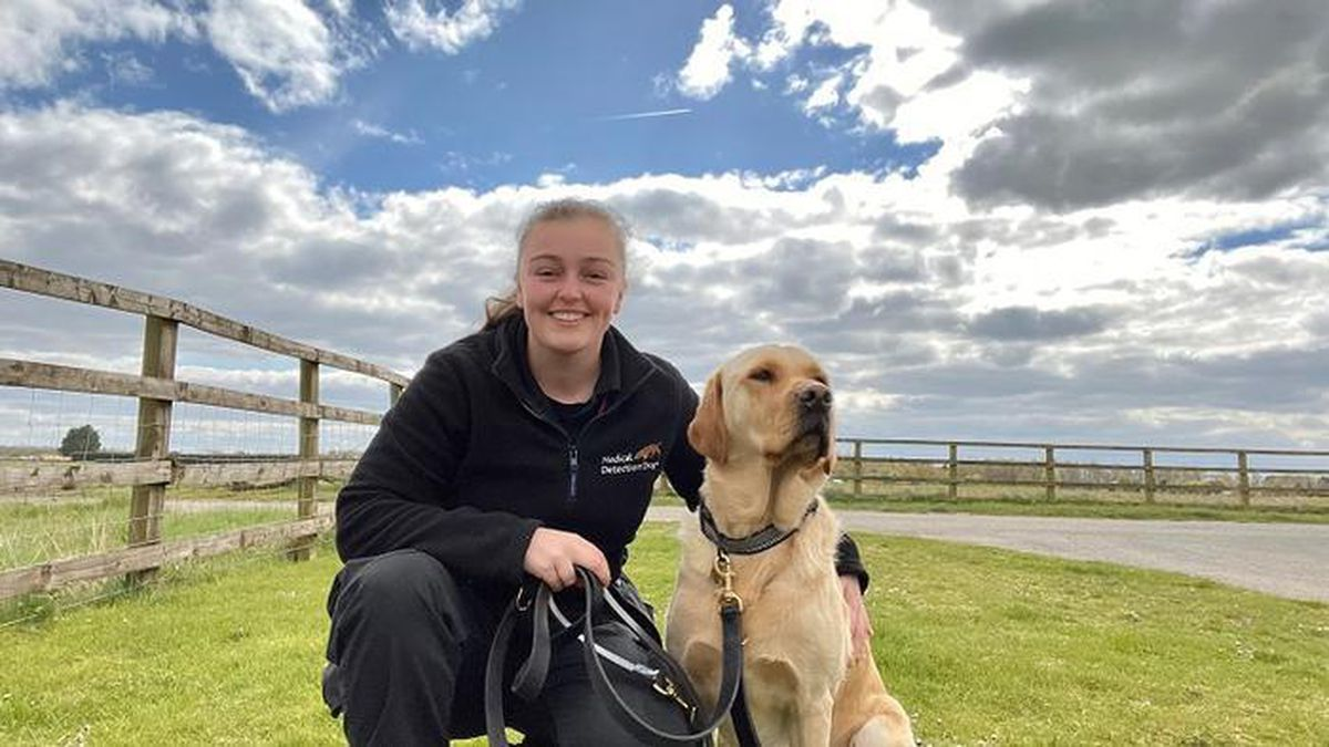 Liv James and Spencer, one of the Covid detection dogs she will be helping to train
