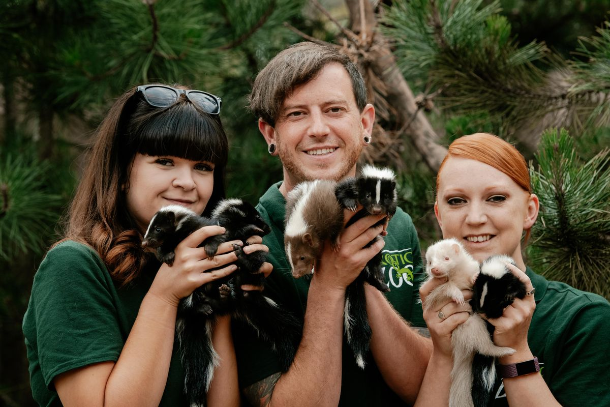 From left, Julie Doughty, Scott Adams and Mel Garton with the baby skunks