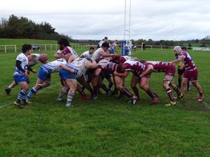 Newport rugby